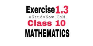 exercise 1.3 class 10 maths