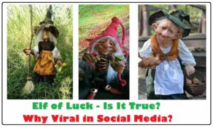 elf of luck is it true